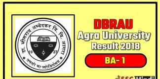 Agra-University-DBRAU-BA-1-First-Year-Result-2018